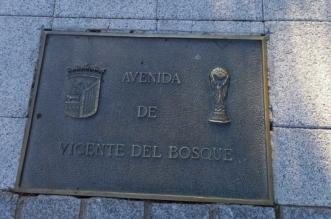 Avenida Vicente del Bosque