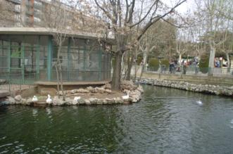 Parque de la Alamedilla