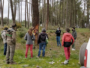 Pinos y bosques de Salamanca