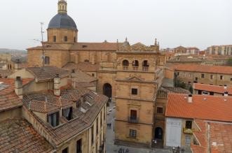 Palacio de Monterrey - Salamanca