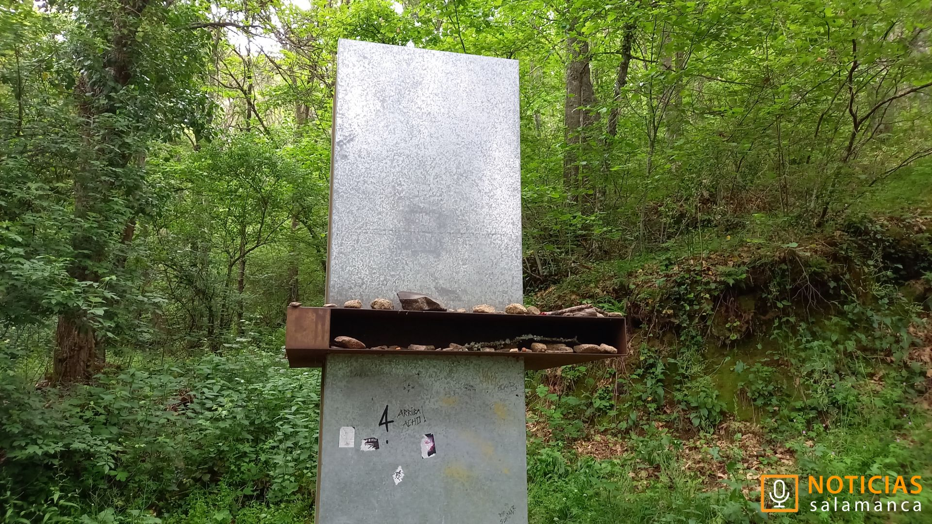 Rusa Asentadero - Bosque de los espejos