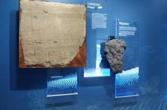 Centro de Interpretación de los mares antiguos